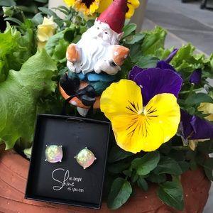 Accessories - Pierced Earrings in a gift box - look like opals